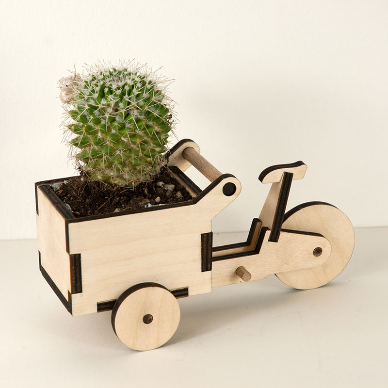 Cargoli Dreirad - Kaktus